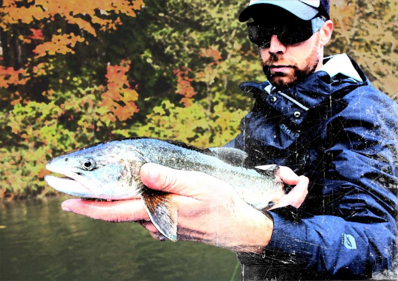 fall color bull trout fishing
